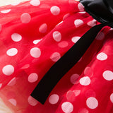 Baby Girls 1 Year Birthday Party Dresses Minnie Mouse Halloween Cosplay Kids Costume Toddler Girls Clothing For Kids 12M 3T Wear - thefashionique