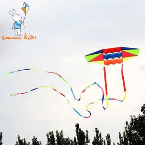 Outdoor Sport Kite Nylon 3D Kite for Adults Single Line Beach Kite Flying with 2pcs 10m Rainbow Kite Tails Kids Children Gift