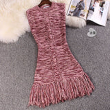 Spring autumn new women's fashion sexy sleeveless tassel hem dress female hit color bottoming knit sweater dress - thefashionique