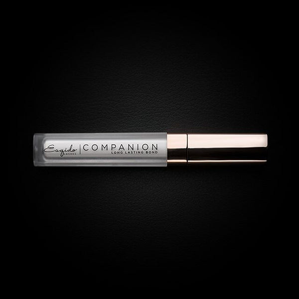 Companion lash glue