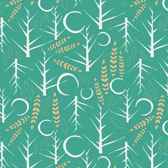 Nactis Viridis Cotton from Lugu designed by Jessica Swift