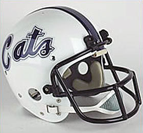 Northwestern Wildcats 1980 Authentic Vintage Full Size Helmet