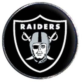 DISC RAIDERS PIN DOME