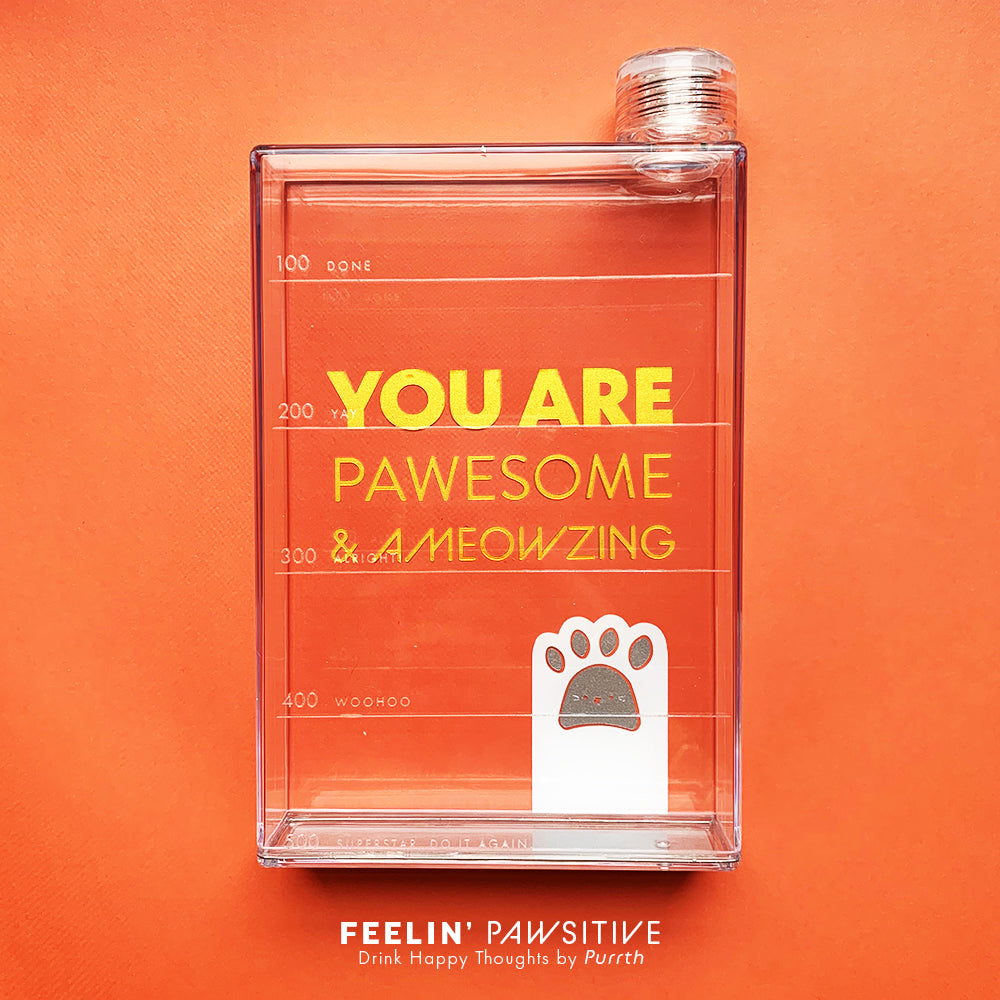 Feelin Pawsitive Drink Bottles