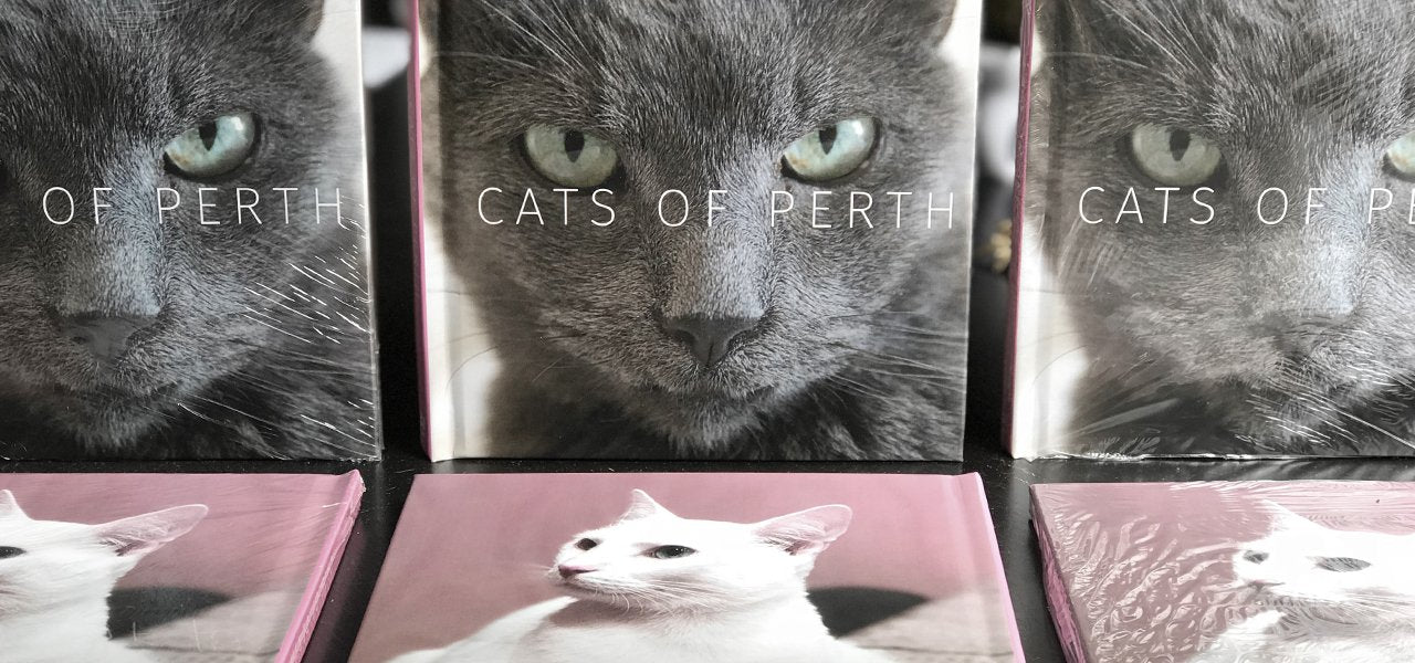 Cats of Perth Book