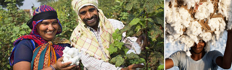 Fairtrade cotton producers