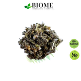 Té de Cardo mariano / Milk thistle Tea / 7 day supply - 30 grs