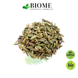 Té de Hinojo / Fennel Tea / 7 day supply - 30 grs