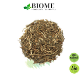 Té de Ruda / Rue Tea / 7 day Supply - 30 grs