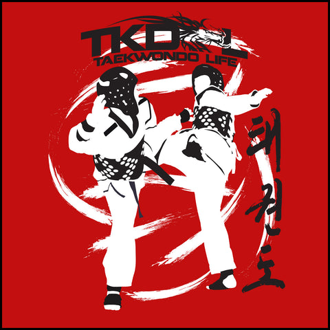 SPIN KICKS! - Taekwondo BOLD GRAPHIC TEE -FREE SHIPPING- AST-428 - Rhino Junction Apparel - 1