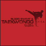 Favorite Boys TAE KWON DO T-SHIRT  - Blood Sweat & TaeKwonDo Design! -YBST417 - Rhino Junction Apparel - 1