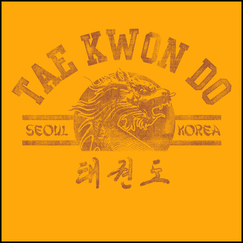 Vintage RETRO Taekwondo T-Shirt- Retro Dragon-YLST-407 - Rhino Junction Apparel - 1