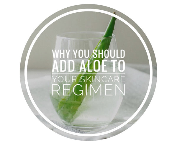3 Reasons Why You Should Be Using Aloe for Your Skin Care Routine