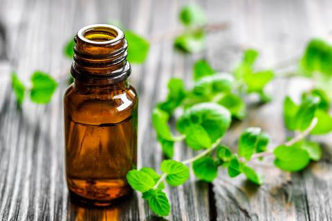 The Benefits of Spearmint Oil on Hair and Scalp