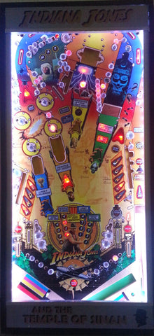 Indiana Jones Framed Playfield