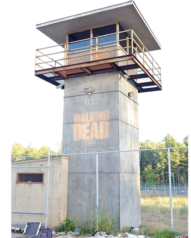 Walking Dead Custom Painted Tower