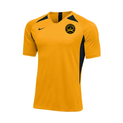2020 Nike Men's Yellow Warm-Up Jersey
