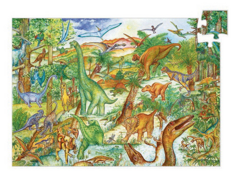 Observation Puzzle -Dinosaurs