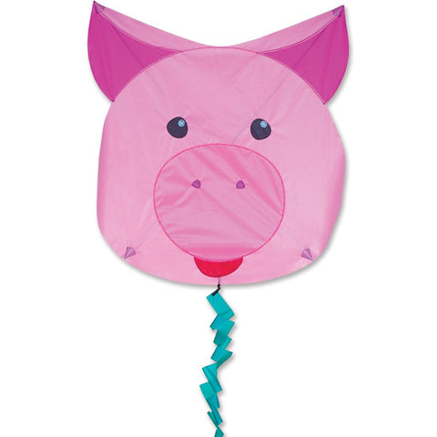 Fun Flyer Kite - Pig
