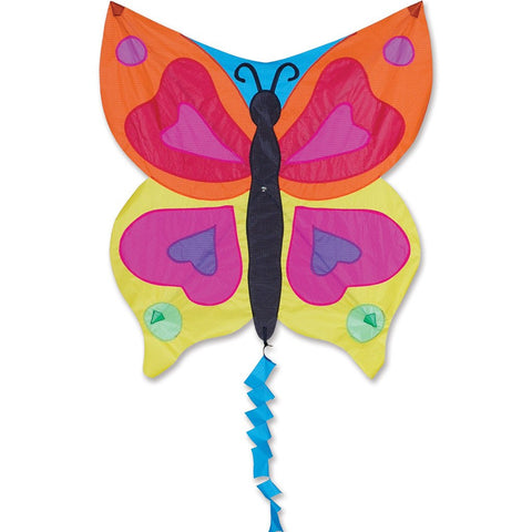 Fun Flyer Kite - Rainbow Butterfly