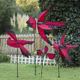 37 in.  North American Cardinal Spinner
