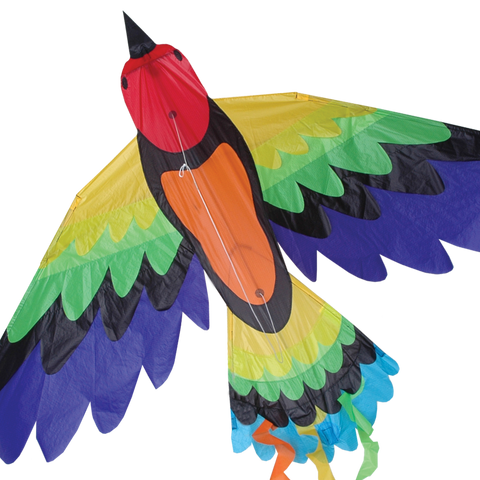 Rainbow Bird Kite
