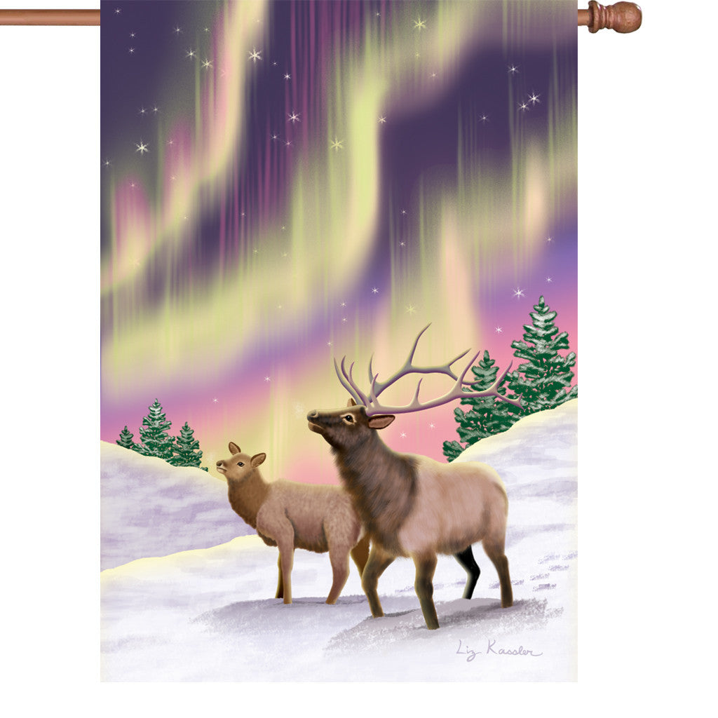 28 in. Christmas House Flag - Northern Lights