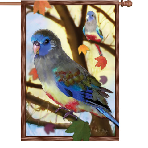 28 in. Bird House Flag - Autumn Blue Bonnets