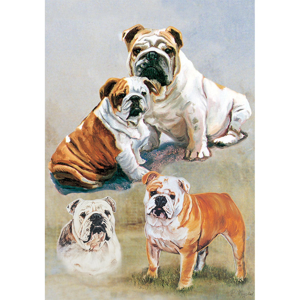 28 in. English Bulldog House Flag - Bulldogs