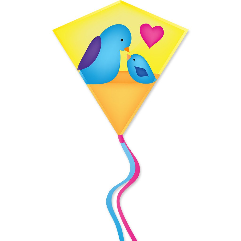 30 In. Diamond Kite - Birds (Bold Innovations)