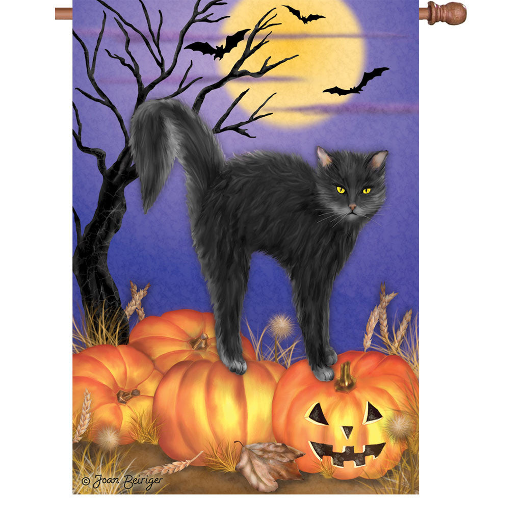 28 in. Halloween House Flag - Jack O'Lantern Pumpkin Kitty Cat