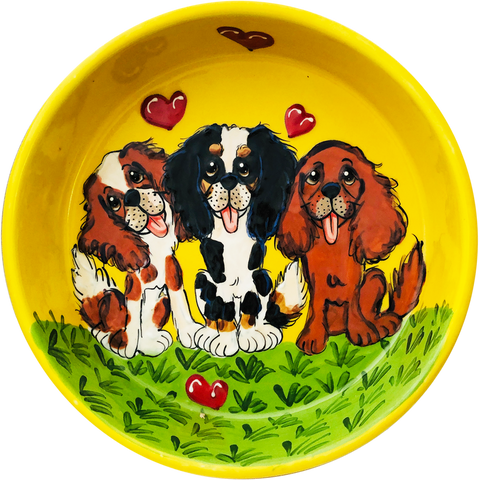 Cavalier King Charles | Dog Bowl