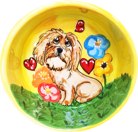 Havanese | Dog Bowl