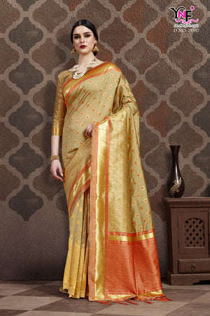 Grey Benarasi Silk Saree