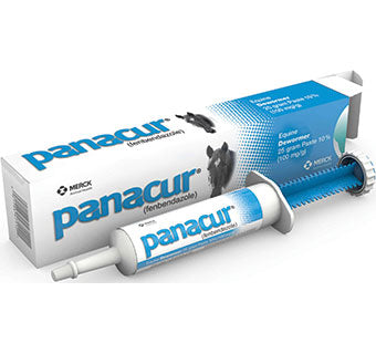 Panacur Paste Syringe #13049171
