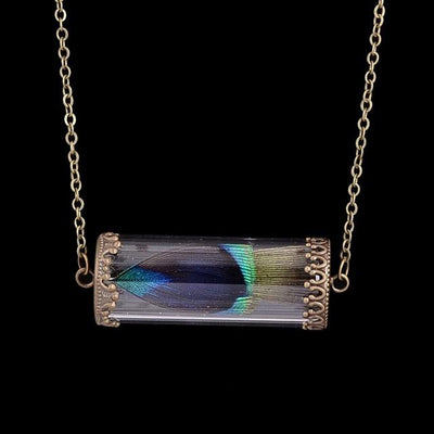 Necklace - Multicolored Feather In Glass Necklace