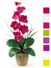 1016 Phalaenopsis Silk Orchid in 8 colors by Nearly Natural | 21 inches