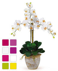 1017 Phalaenopsis Silk Orchid in 8 colors by Nearly Natural | 27 inches