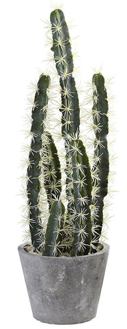 4845 Artificial Cactus Garden with Cement Planter by Nearly Natural | 27.5""