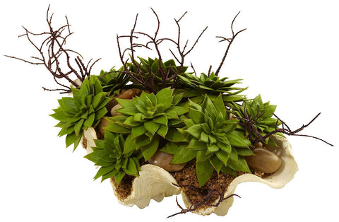 4851 Artificial Succulent Garden in Faux Sea Shell by Nearly Natural | 11""