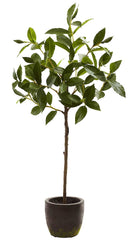 5423 Bay Leaf Artificial Standard Topiary Plant by Nearly Natural | 29""