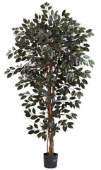 5436 Capensis Ficus Artificial Tree with Planter by Nearly Natural | 6 feet