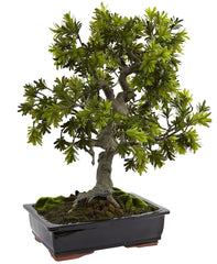 4849 Giant Podocarpus Silk Bonsai Tree with Planter by Nearly Natural | 30""