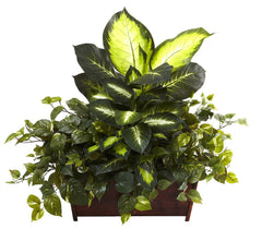 6803 Golden Dieffenbachia Philo & Pothos Silk Plant by Nearly Natural | 30""