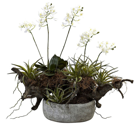 4839 Mini Dendrobium Orchid & Succulent Silk Plants by Nearly Natural | 20""
