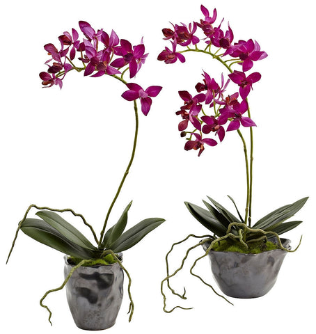 4993-S2 Mini Dendrobium Orchid Set of 2 Silk Plants by Nearly Natural | 13.5""