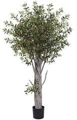 5439 Olive Artificial Silk Tree with Planter by Nearly Natural | 6 feet