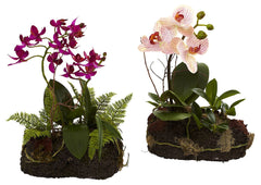 4835-S2 Phalaenopsis & Dendrobium Silk Orchid Set of 2 by Nearly Natural | 10""