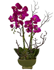 4990 Phalaenopsis Orchid & Succulent Silk Plants by Nearly Natural | 21""