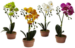4991-S4 Phalaenopsis Silk Orchid Set of 4 w/Planters by Nearly Natural | 13""